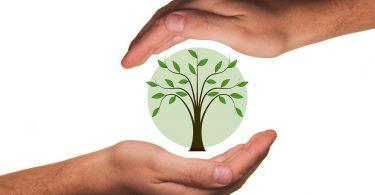 Il riscaldamento a pellet è una scelta green ed ecosostenibile